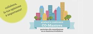 foto_co-mantova_consultazione